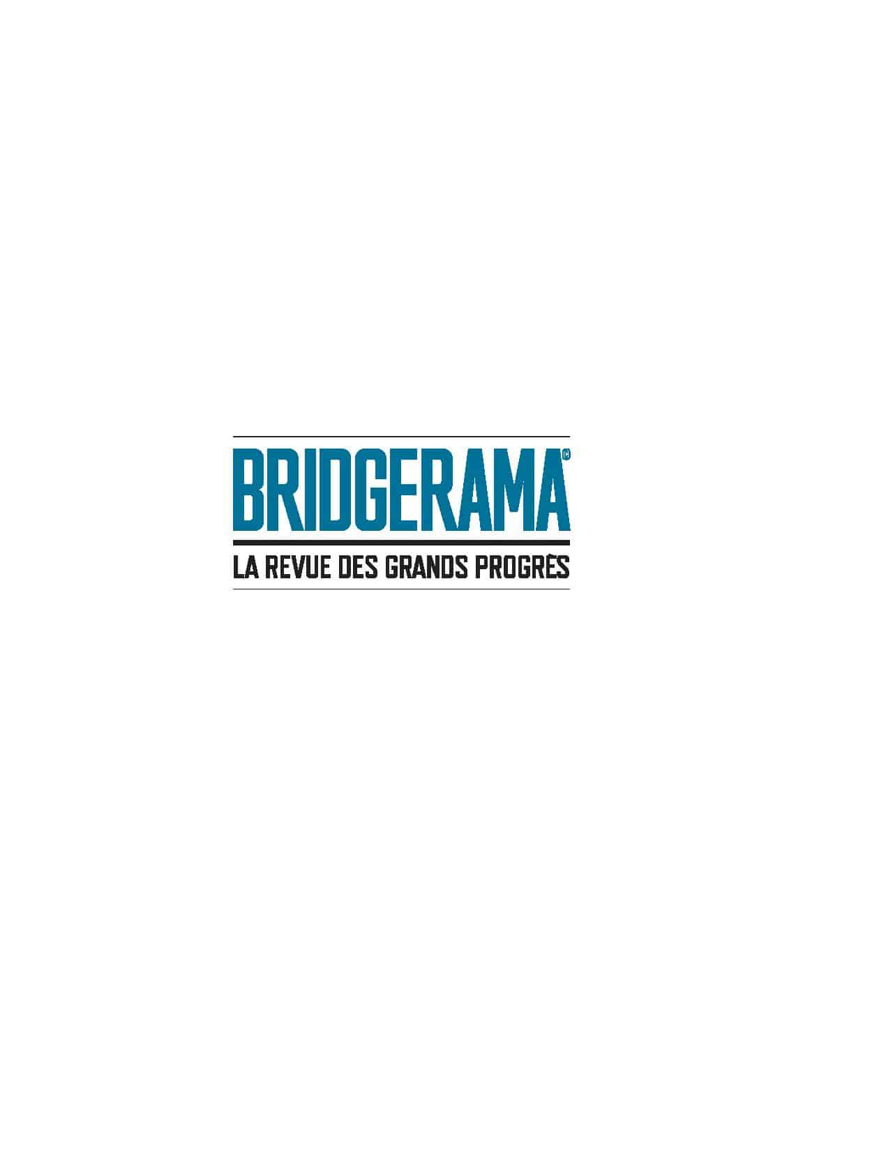 logo 2019 BRIDGERAMA-page-001
