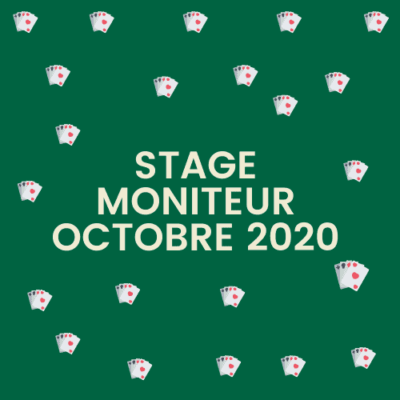 Stage Moniteur