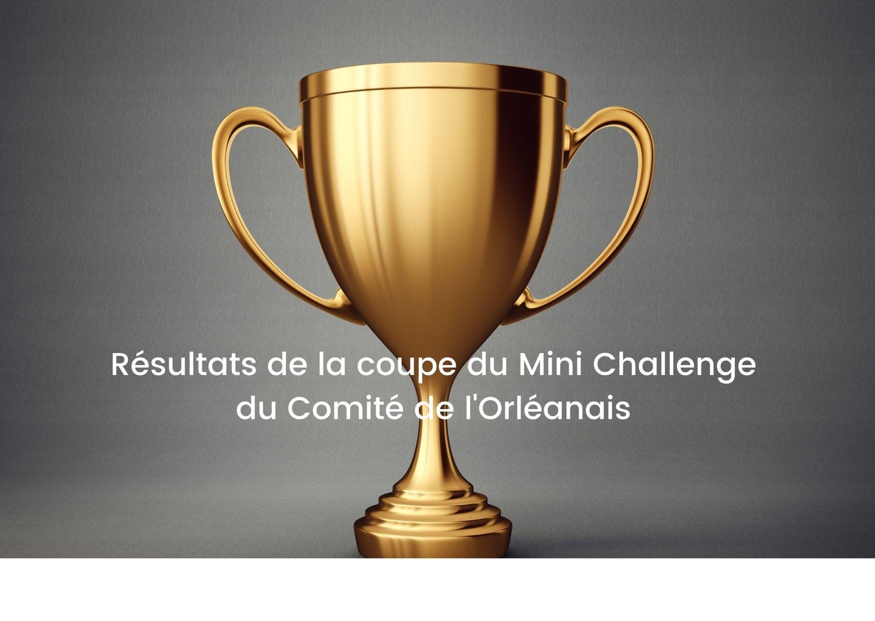 Read more about the article Classement du Mini Challenge du Comité